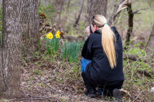 Karen photographing daffodils in the Ozarks