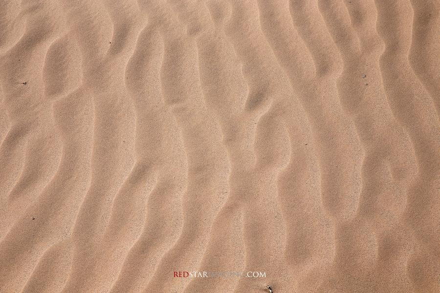Mojave Desert Sand